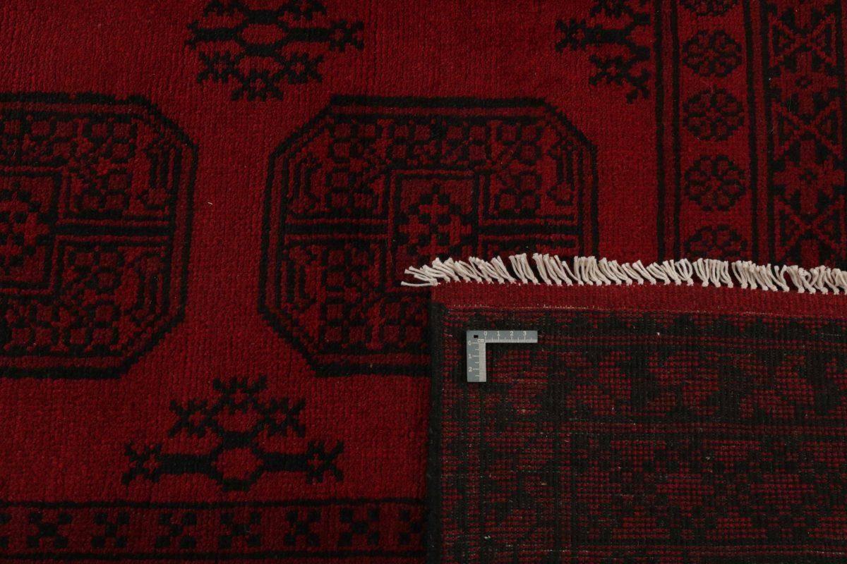 Dywan  Aktscha 1397448 168x245cm