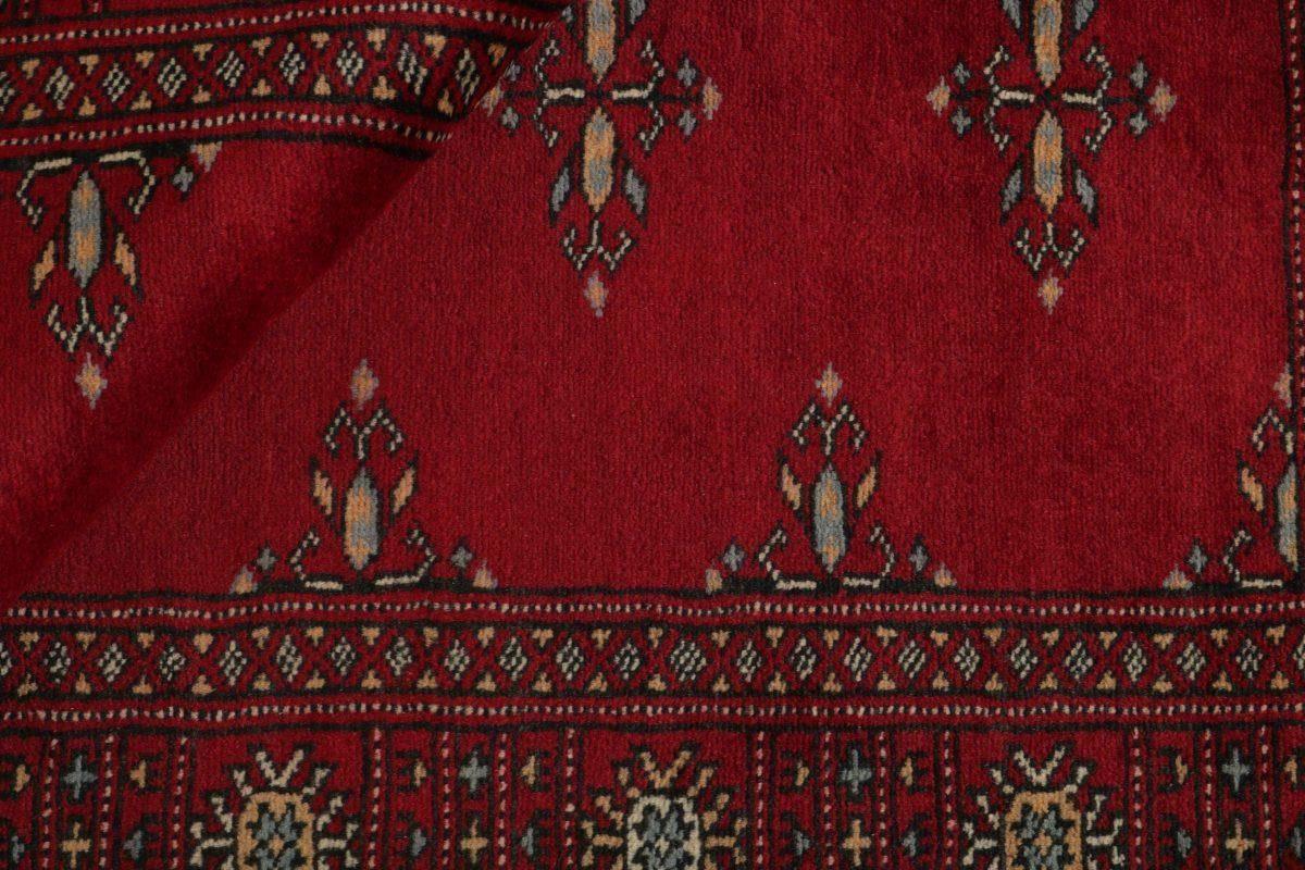 Dywan  Pakistan Bokhara 1382215 79x126cm