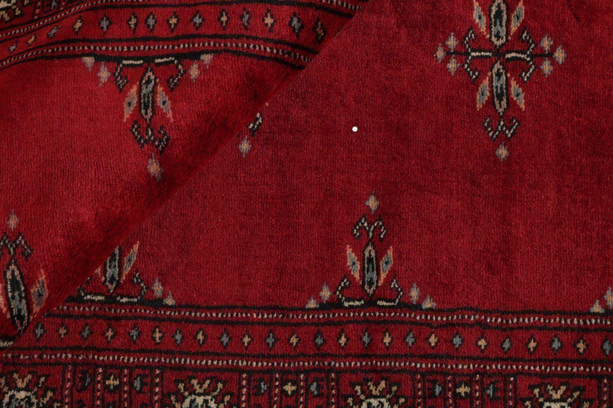 Dywan  Pakistan Bokhara 1382216 79x118cm