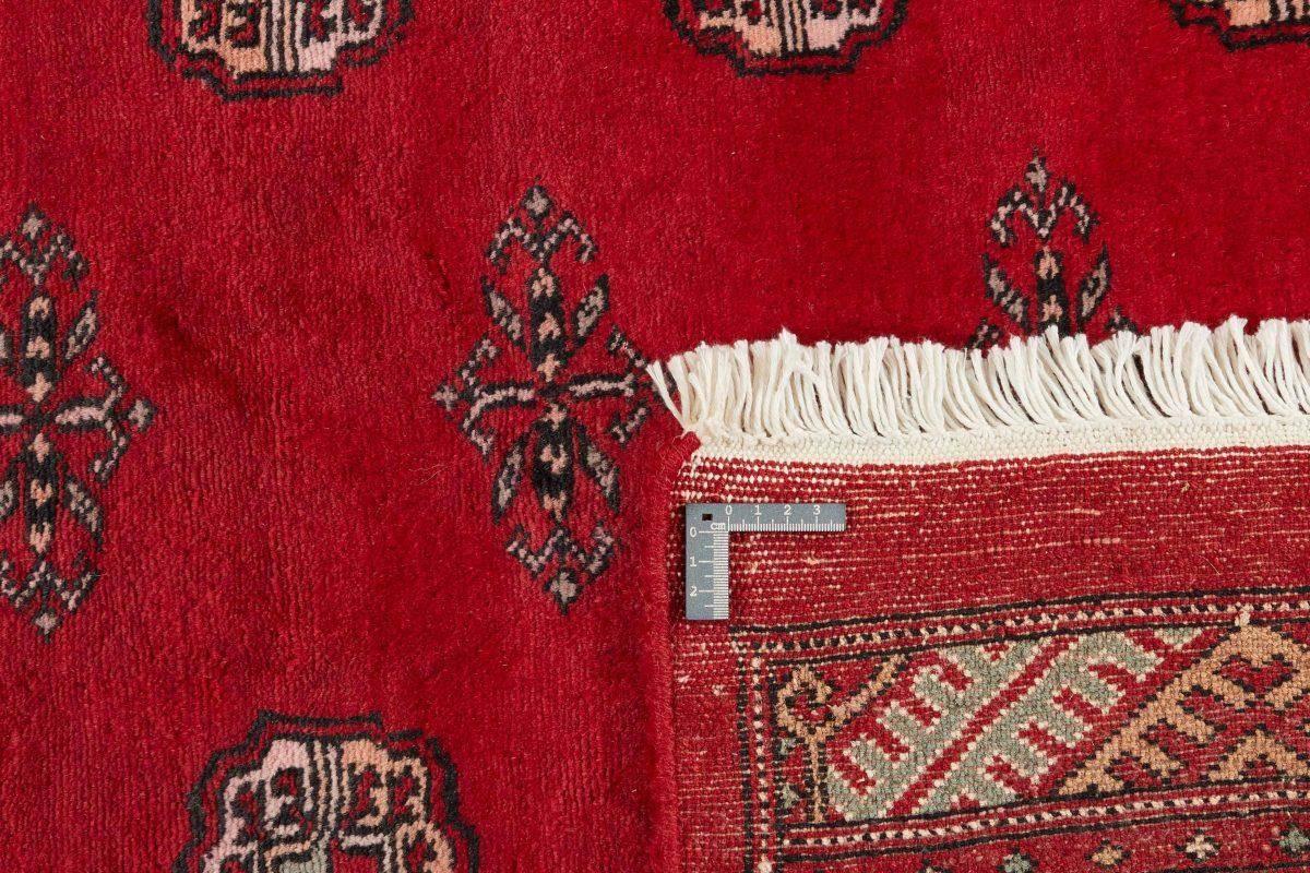 Dywan  Pakistan Bokhara 1382429 140x202cm