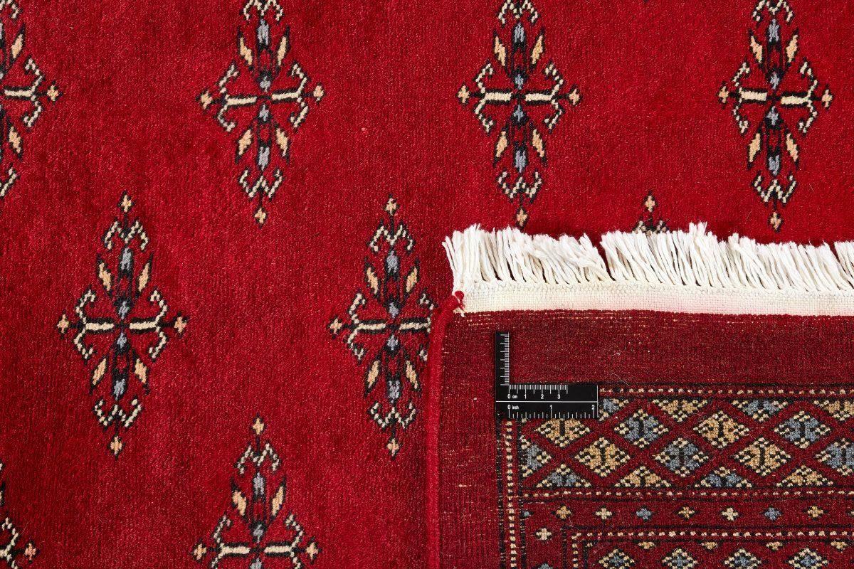 Dywan  Pakistan Bokhara 1382537 202x320cm
