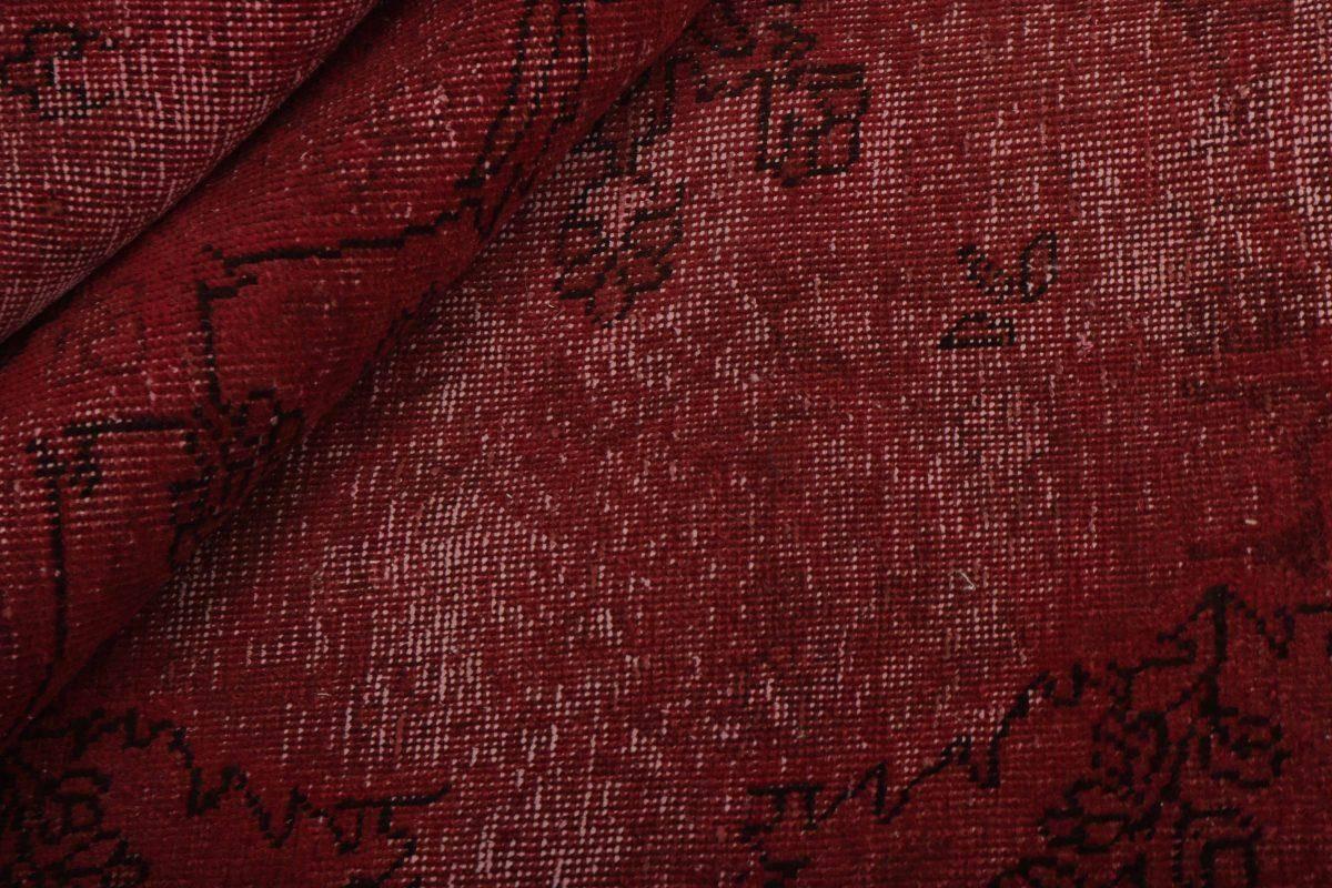 Dywan  Vintage Royal Fine 1421033 209x273cm